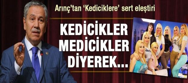 Bülent Arınç'tan Adnan Oktar'ın kediciklerine sert eleştiri!