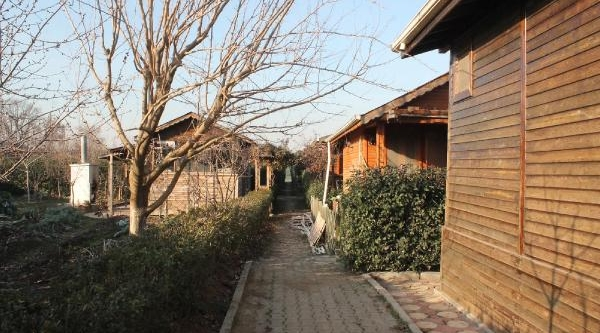 Bursa'da Hobi Bahçelerindeki Evleri Soydular