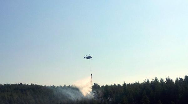 Bursa'da Orman Yangını (2)