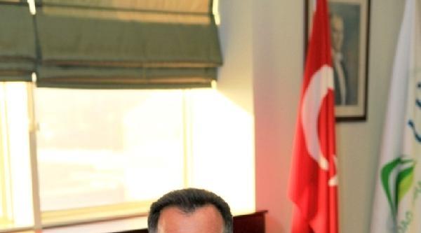 Bursa'da Siyah İncir Dölleme Bahçesi Kuruluyor