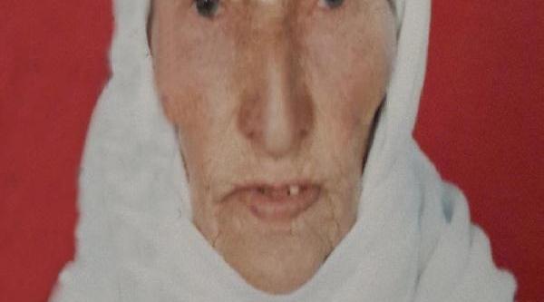 Buzda Kayip Düşen Yaşli Kadin Öldü