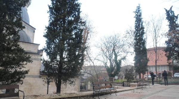 Cami Bahçesinde Ağaç Kesimi