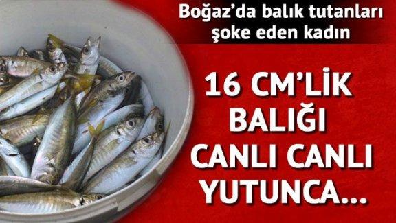 Canlı balığı 'şifa olsun' diye yutunca ölümden döndü