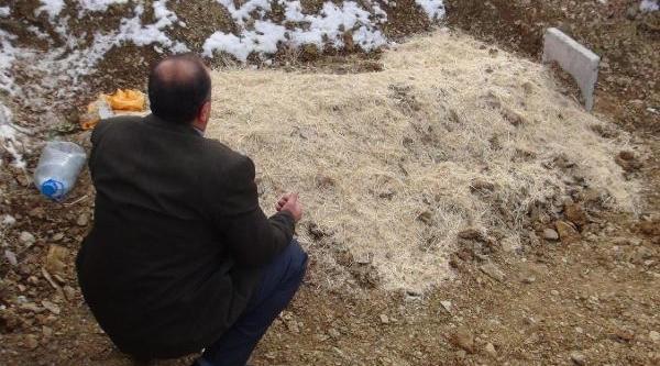 'çatidan Düştü' Denilen Genç Kizi, Babasi Odunla Döverek Öldürmüş - Ek Fotoğraf