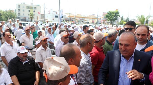 Çavuşoğlu: Ak Partililer Koşa Koşa Sandığa Gidecek
