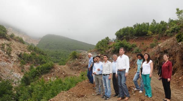 Çevreciler, Ormanlık Alana Yapılan Kül Depolama Alanını Protesto Etti