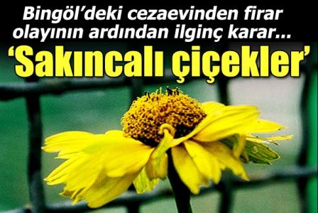 'Cezaevindeki çiçeklere özgürlük çıktı'