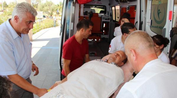 Chp'li Belediye Başkanı Kazada Yaralandı (2)