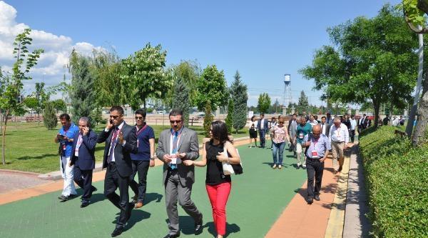 Chp'li Belediye Başkanları Eskişehir'de Toplandı (2)