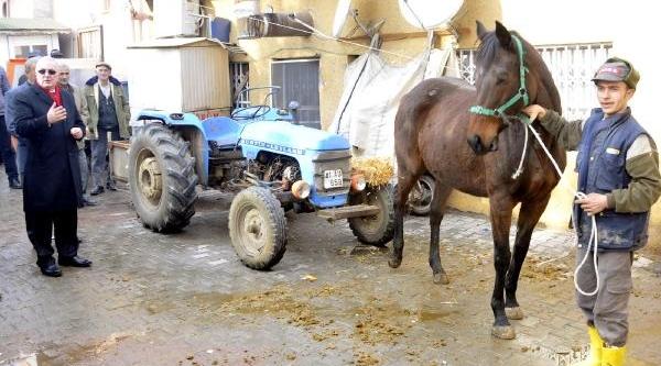 Chp'li Ensar Öğüt Atin Çektiği Traktöre Bindi, Saman Balyasi Yakti
