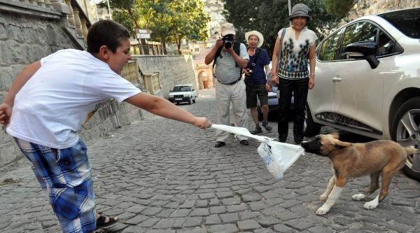 Çocukla Köpeğin Su Mücadelesi