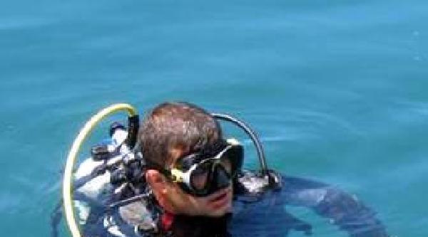 Dalgıcın Köpek Balığı Paniği