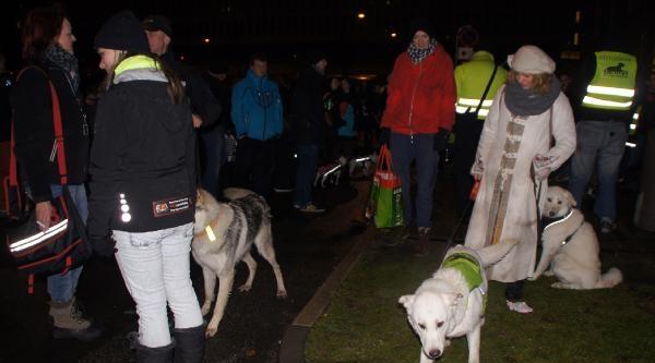Danimarka'daki Hayvan Dostları Köpek Yasasına Karşı Yürüdü