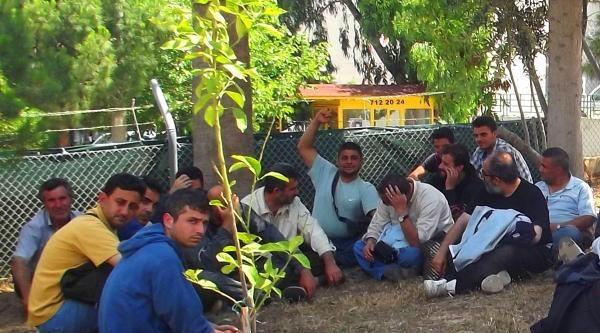Datça'da 26 Suriyeli Kaçak Yakalandı