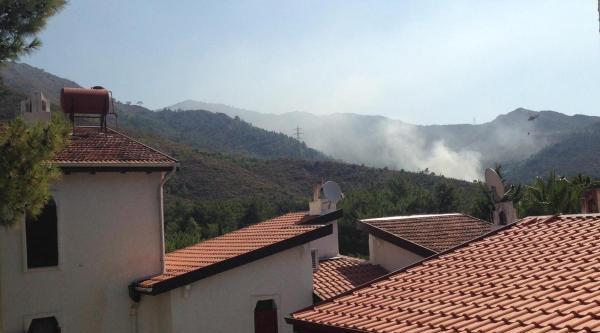 Datça'da Orman Yangını