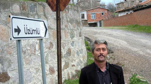 Deli Kemal'in Seçim Takvimi