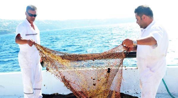 Denizin Dibini Saran Ağlar İçin Temizlik Çalişmasi