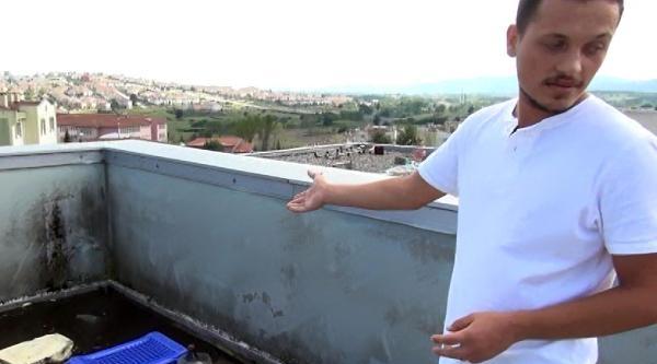 Depremzedeler İçin Yapılan İş Merkezi Bonzai Kullananların Meskeni Oldu