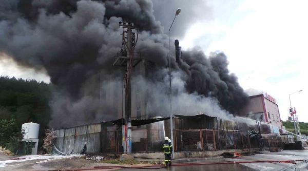 Dilovası Osb'de Fabrika Yangını (2) - Yeniden