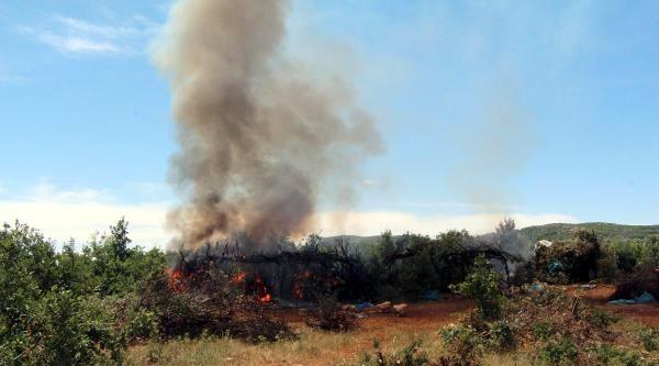 Diyarbakır- Bingöl Yolunu Kapatan Pkk'ya Operasyon Başlatıldı(2)