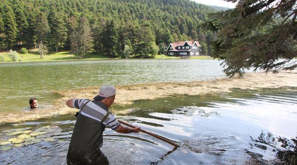 Doğa Harikasında Gölü Saran Otlar Temizleniyor