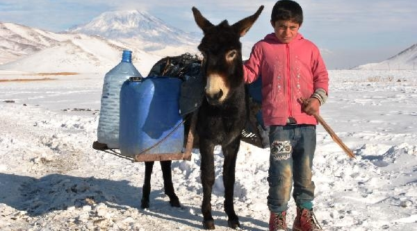 Dondurucu Soğukta Eşeklerle Su Taşiyorlar