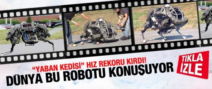 Dünya bu robotun koşmasını konuşuyor!