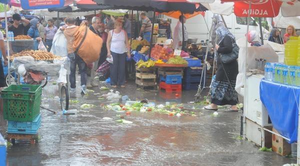Edirne'de Fırtına Ağaçları Devirdi (2)