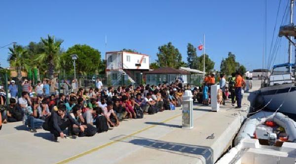 Ege'de 8 Ayrı Yerde 277 Kaçak Yakalandı