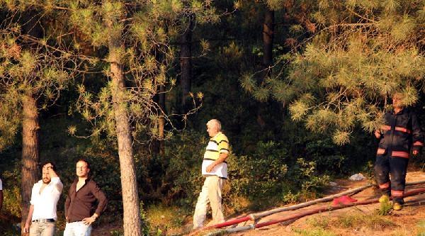 Ek Fotoğraflar// Maltepe'de Orman Yangını