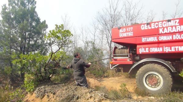Ek Fotoğraflar - Şile'de Orman Yangını