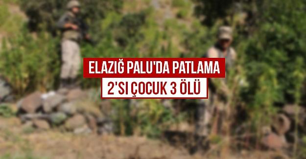 Elazığ Palu'da patlama  2'si çocuk 3 ölü