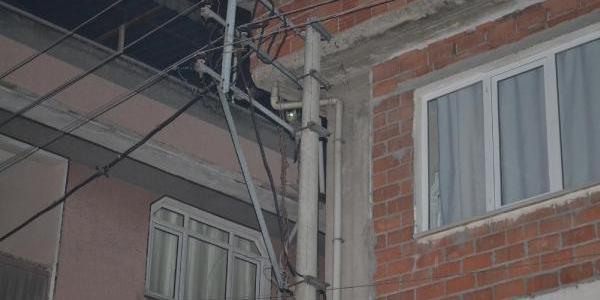 Elektrik Direğinde 3 Saat Mahsur Kalan Kedi Kurtarildi