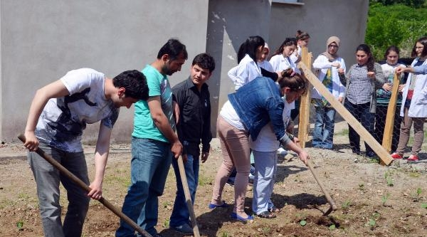 Engelli Öğrenciler Bahçelerine Sebze Fidesi Dikti