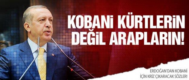 Erdoğan'a göre Kobani Kürtlerin değil Arapların!