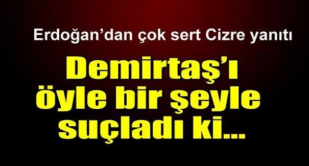 Erdoğan'dan Demirtaş'a çok sert Cizre yanıtı!