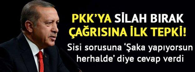 Erdoğan'dan silah bırak çağrısına ilk tepki