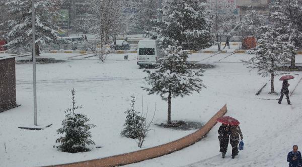 Erzurum Ve Muş'ta Kar Yağdı
