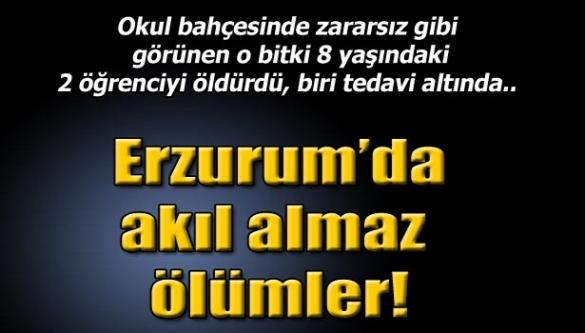 Erzurum'da akıl almaz ölümler!