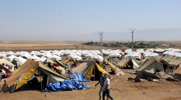 Ezidilerin, Rojava'daki Kamplarda Zorlu Yaşamı