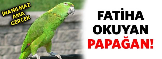 Fatiha okuyan papağan!