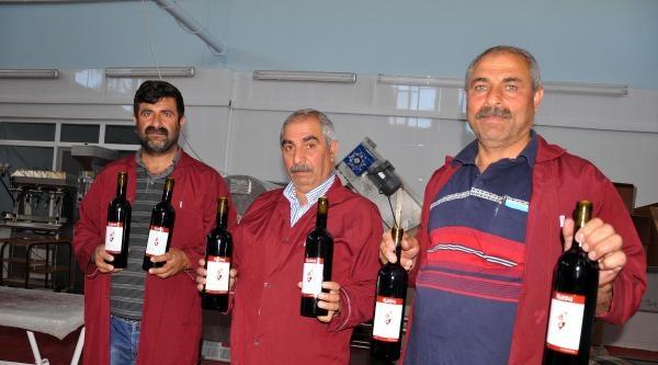 Firmaların Üzüm Fiyatını Düşürmesine Kızdı, Köyde Şarap Fabrikası Kurdu