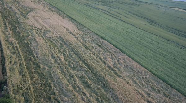 Fırtına Tekirdağ'da Ekili Alanlara Zarar Verdi
