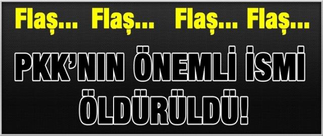 Flaş! Flaş! PKK'nın önemli ismi öldürüldü!