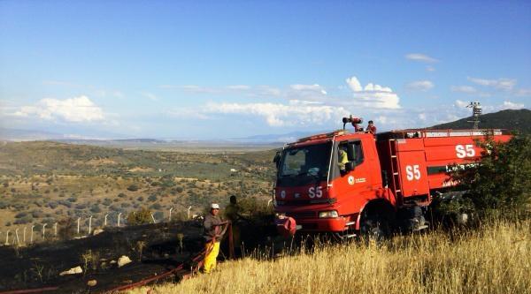Foça'da 3 Hektar Makilik Yandı