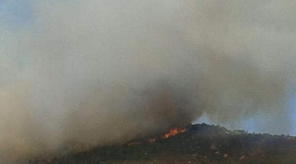 Foça'da Makilik Alandaki Yangın Ormana Da Sıçradı