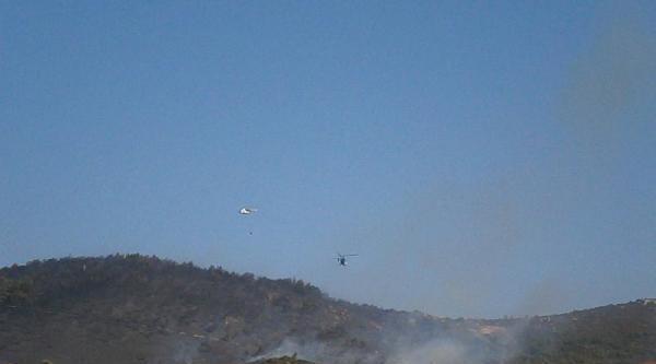 Foça'da Makilik Alandaki Yangın Ormana Da Sıçradı // Ek