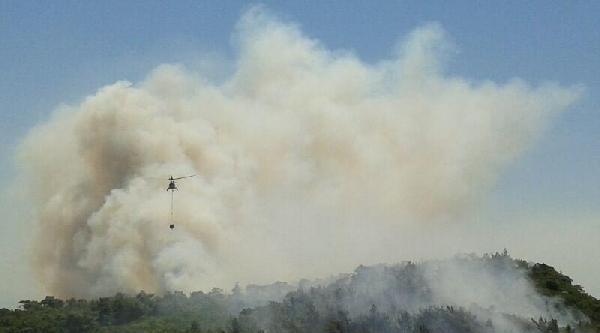Foça'da Orman Yangını (2)