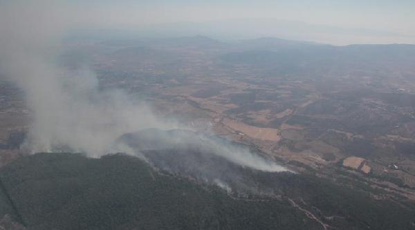 Foça'da Orman Yangını (ek Fotoğraflar)