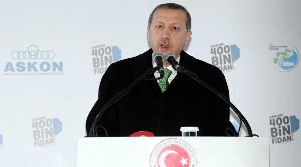 Fotoğraflar // Başbakan Erdoğan, 400 Bin Fidan Dikim Töreninde Konuştu